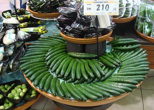 แตงกวาญี่ปุ่น - Japanese Cucumber