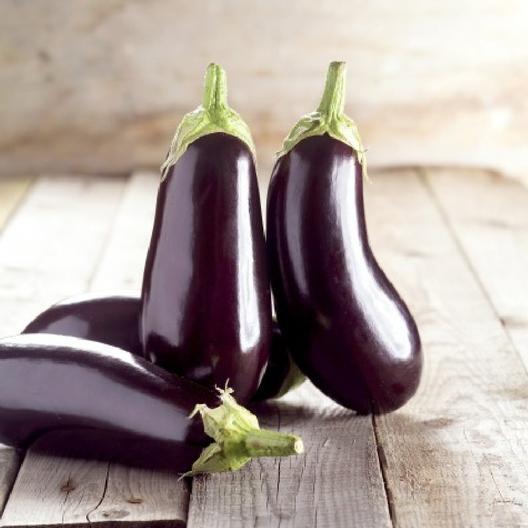 มะเขือฟลอริด้า - Florida Market Eggplant