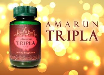 อัมรันตรีผลา Amrun Tripla