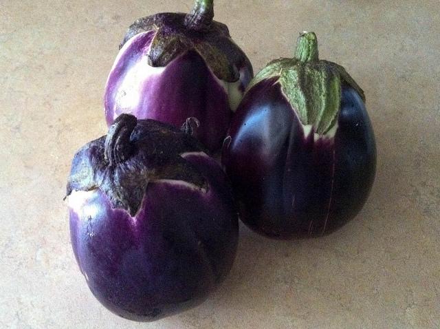 มะเขือม่วงไวโอเลต - Violet eggplant