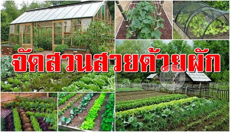 การจัดสวนด้วยพืชผักสวนครัว