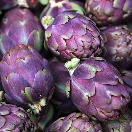 อาติโช้ค สีม่วง - Purple artichoke
