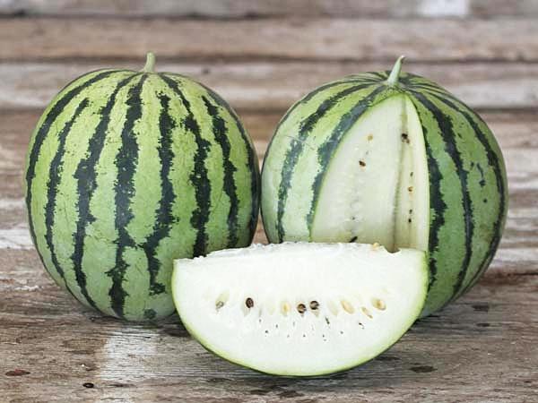 แตงโมเนื้อสีขาว - White Wonder Watermelon