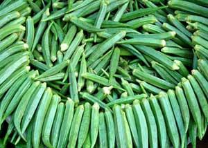 กระเจี๊ยบมอญเขียว - Green Okra