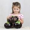 มะเขือยักษ์ แอสแวด - Aswad Giant Eggplant