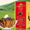 คอร์ดี้พลัส ถั่งเฉ้าธิเบต Cordy Plus อ.วิโรจน์