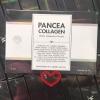 PANCEA COLLAGEN แพนเซีย คอลลาเจน ที่สุดของความอ่อนเยาว์ เรทส่งถูกสุด
