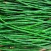ถั่วฝักยาวใส้ตัน - Green Long Cowpea