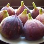 มะเดื่อฝรั่ง - Turkey Fig Fruit