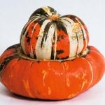 (Whole 1 Oz.) ฟักทองหมวก - Turk's Turban Pumpkin