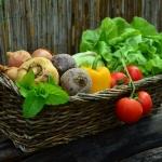 เมล็ดพันธุ์ผัก(Vegetables)