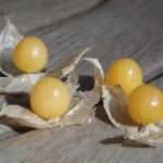 พายแอปเปิ้ล โทมาทิลโล่ - Pineapple Tomatillo