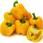 พริกหวานยักษ์เหลือง 10 เมล็ด/ชุด