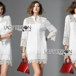 Lady Jane Classic Feminine Combined Lace Shirt Dress