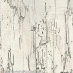 95402-2 วอลเปเปอร์ติดผนัง อัลบั้ม บางนา