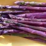 หน่อไม้ฝรั่งสีม่วง - Pacific Purple Asparagus