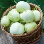 แตงกวาแอปเปิ้ล - Crystal Apple Cucumber