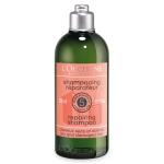 แชมพูสำหรับผมแห้งเสีย L'occitane Aromachologie Repairing Shampoo