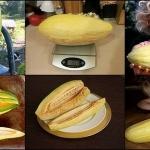 แคนตาลูปกล้วย 5 เมล็ด/ชุด