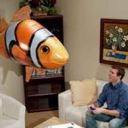 ปลาบอลลูนบังคับวิทยุ (ปลาฉลาม) หรือ ปลานีโม่