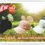 หมวก แฟชั่น Mickey mouse มุก แสนหวาน update Sep,16 thumbnail 4