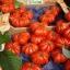 มะเขือเทศ คอสโตลูโต - Costoluto Tomato thumbnail 2