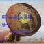 ไอ้ไข่ เด็กวัดเจดีย์ รุ่นที่ระลึกกฐิน ๕๙ องค์บูชาไม้แกะ ทาทองแท้ หลายขนาด thumbnail 3