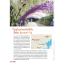 Japan Kyushu เที่ยวญี่ปุ่น ฉบับตะลุย คิวชู ปรับปรุงใหม่ ครบ 7 จังหวัด thumbnail 13