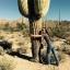 กระบองเพชร ซากัวโร่ - Arizona Saguaro Cactus Seeds thumbnail 2