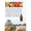 Japan Kansai คันไซ เที่ยวได้ไกล ไปได้อีก thumbnail 3