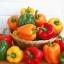 (Whole 1 Oz) พริกหวานสีแดง - Red Sweet Pepper thumbnail 3