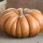ฟักทองมัสกี - Musquee De Provence Pumpkin thumbnail 1