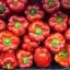 พริกหวานแคลิฟอร์เนียสีแดง - Red Sweet Pepper thumbnail 3