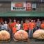 ฟักทองยักษ์ พันธุ์แอตแลนติก - Atlantic Giant Pumpkin thumbnail 3