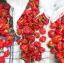 พริกจาไมก้า สีแดง - Red Jamaican Scotch Bonnet Pepper thumbnail 4