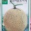 (Whole 1 ซองสีแท้) เมล่อนเกาหลี เอิร์ลเมาท์ฮาจี - Earl's Mount Ha Gye F1 Melon thumbnail 1