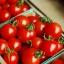 มะเขือเทศ เชอรี่สวีทตี้ - Cherry sweetie Tomato thumbnail 4