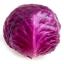 (Whole 1 Oz) กะหล่ำปลีสีม่วง - Purple Cabbage thumbnail 1