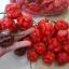 พริกตรินิแดด มอรูก้า สกอร์เปียน(สีแดง) - Trinidad Moruga Scorpion thumbnail 2