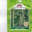 ศรแดง : ถั่วฝักยาว ลำน้ำพอง(ติดผลดก) thumbnail 1
