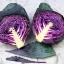 (Whole 1 Oz) กะหล่ำปลีสีม่วง - Purple Cabbage thumbnail 3