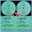 C1-117 แผ่นเสียง เพลงไทยสตริงเก่า สภาพสวย แผ่นสะสม ส่วนใหญ่ไม่เคยลงเข็ม เพลงฟัง มากันทุกค่าย RS,GRAMMY,ONPA,MUSIC TRAIN,SOUND SCALE,EMI thumbnail 84