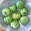 มะเขือเทศม้าลายสีเขียว - Green Zebra Tomato thumbnail 1