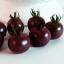 มะเขือเทศเชอรี่สีดำ - Black Cherry Tomato thumbnail 4
