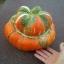 (Whole 1 Oz.) ฟักทองหมวก - Turk's Turban Pumpkin thumbnail 2