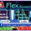 แผ่นเฟล็ก Flex เรืองแสง สีฟ้า ราคา ถูก โพลีเฟล็กเรืองแสง thumbnail 2