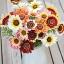 ดอกเดซี่ 3 สี คละสี - Tricolor Daisy Flower thumbnail 1