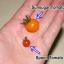 มะเขือเทศสะพูน เล็กสุดในโลก - Spoon Tomato thumbnail 4