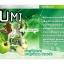 มีขายแล้วที่นี่ Agel UMI เอเจล อูมิ ราคาพิเศษลดสูงสุดถึง 30% ส่งฟรี thumbnail 3