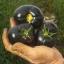 มะเขือเทศแบล็คบิวตี้ - Black Beauty Tomato thumbnail 3
